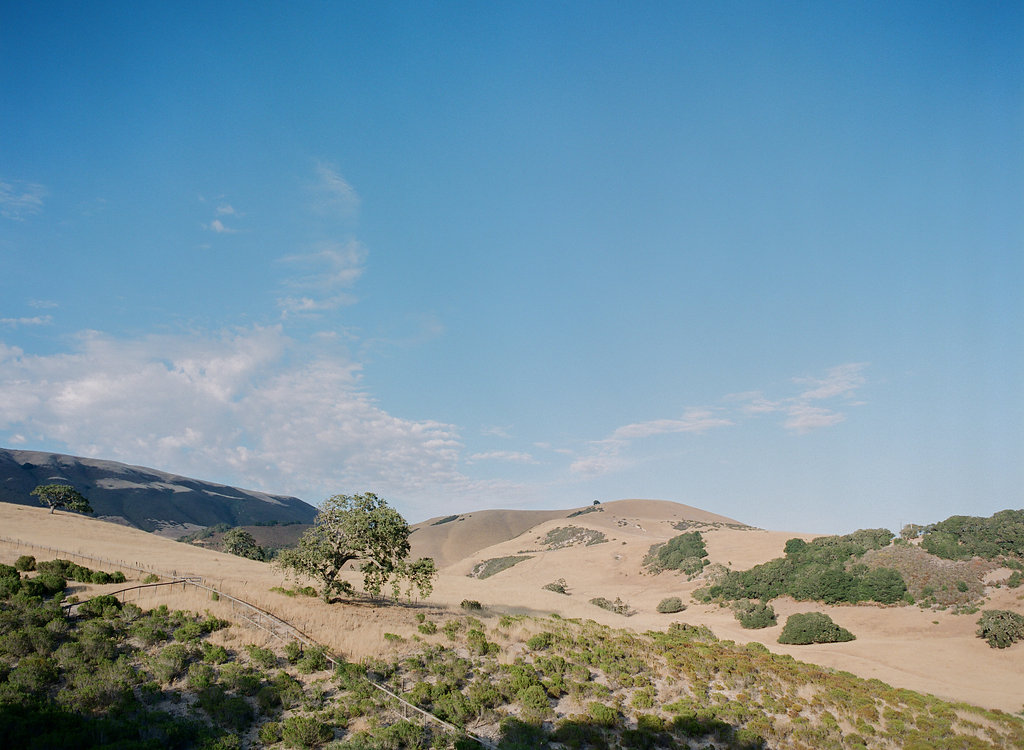 Photo by Corbin Gurkin. Rosemary Events wedding, Carmel Valley Landscape. Wedding Venue