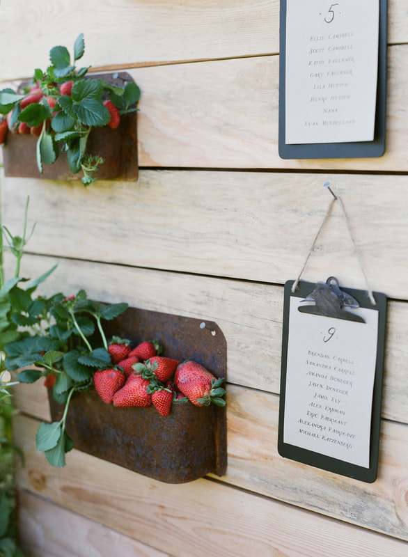 Escort Card Display at Rosemary Events Party Seating Clipboards by Brenna Berger Design and Strawberry Decor by Mindy Rice Design.  Photo by Jose Villa #strawberrydecor #escortcardideas
