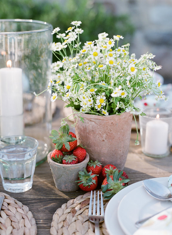 Feverfew in Terracotta Pots w/ Strawberry accent by Mindy Rice Design. Welcome Party by Rosemary Events. Photo by Jose Villa