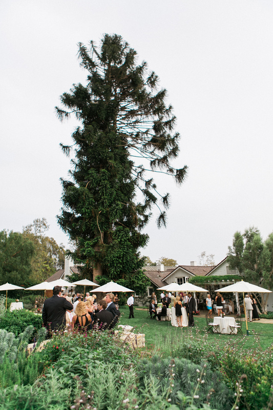 Cocktails in the Garden - Wedding Reception by Rosemary Events